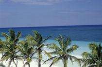 Caribbean Paradise by John Mitchell