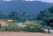 The road east of Songmbock, Cameroon by Palle Smith-Petersen