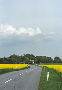 Country road a sunny summer day by Palle Smith-Petersen