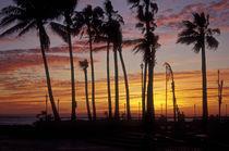 Baja Sunset von John Mitchell