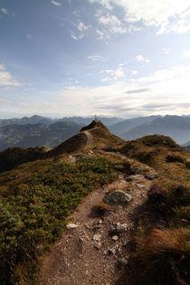 Gipfelkreuz - Alpen - Panorama - Gebirge von Jens Berger