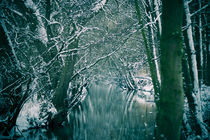Winter river by Roland Hemmpel