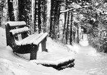 Winter Bench - Winterbank by Martin Krämer