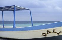 Dali Boat von John Mitchell