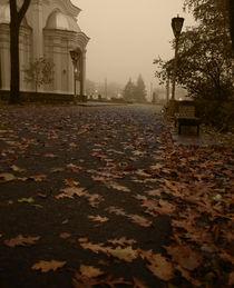 Autumn twilight by Alise M.