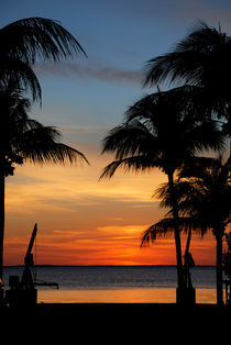 Sunset In Paradise by Carolyn Cochran