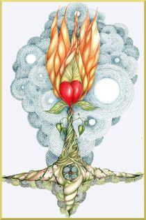 The Sacred Heart Flower by Helena Wilsen - Saunders