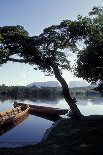 Peace on the  Rio Carrao von John Mitchell