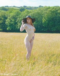Nude in the meadow von paul-crusier