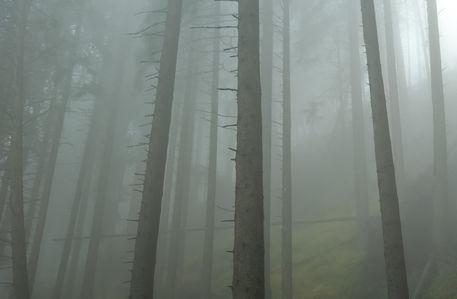 Nik1192-panorama-edit