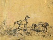 Pferde, Zeichnung von pahit