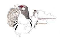 Tibetan snow hen by Mikael Biström
