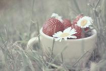 Summer cup II by Yevgeniya Prorvina