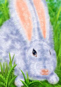 White Hare von Olga Sabo