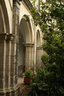 Monastery Arches von John Mitchell