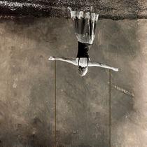 2 by Ervin Bartis