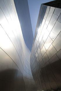 Walt Disney Concert Hall von Tim Glowik