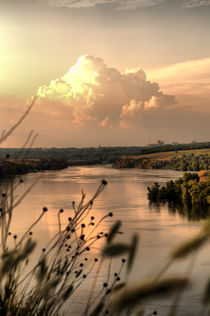 Summer landscape von Anna Minina
