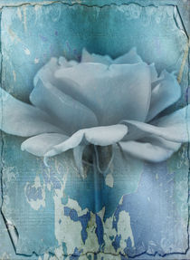 Feeling Blue by Rozalia Toth