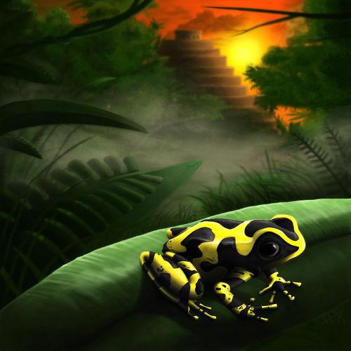 Dart-frog-2-re-painting-flat
