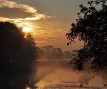 Morgenstimmung am Wasser by alana