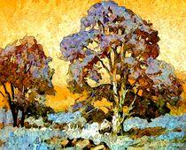 Herbstlichter von Eckhard Röder