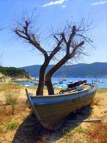 Tree-locked von Elyse Pyle