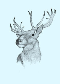 Deer With Blue Background by Karin Idering
