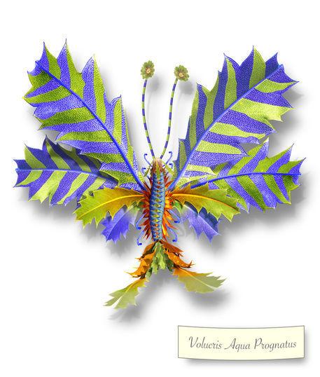 Butterfleur016-tcherevkoff