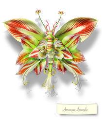 Butterfleur018-tcherevkoff