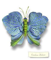 Butterfleur039-tcherevkoff