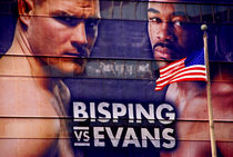 American Boxers by Brian  Leng