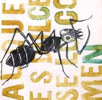 al que es dulce se lo comen las hormigas von Victoria Hernandez