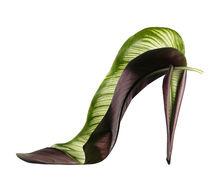 Shoe Fleur 56 von Michel Tcherevkoff