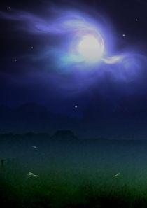Nachtlichter von Eckhard Röder