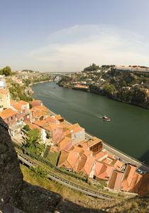 River Douro I von Tiago  Reis