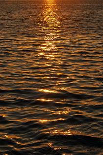 Abendsonne-im-wasser