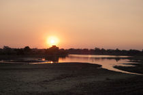 Mfuwe Evening 1 by Jessie English