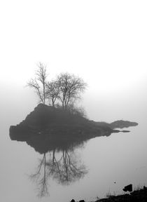 Foggy Morning von David Fouch