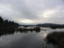 Silver Lake Washington von David Fouch
