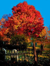 Autumn in New England by John Thomas Grant