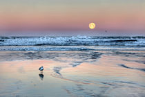 """Moonset"" von JoHanna Wienert"