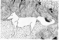 Meet the wolf von Noushka Woszczylo