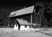 Mt-adams-barn