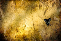 Sand Under Butterfly by Jamie Starling