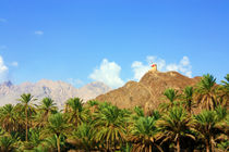 On the way to Nizwa by Yuliya Akhmedova