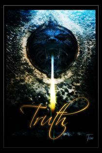 Die Wahrheit • The Truth by docrom