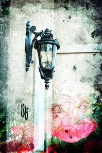 Home by Rozalia Toth