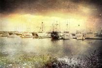 Seaport Village View von Rozalia Toth