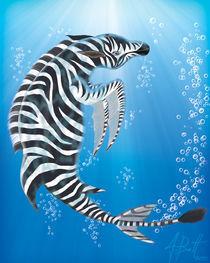 Zebra+Dolphin=Zolphin? by Jeffrey Batt